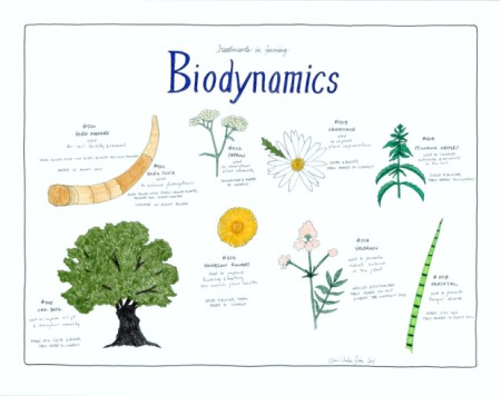 11-biodynamicsposter-Franklin-Liquors