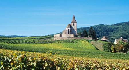 6-Alsace-Franklin-Liquors