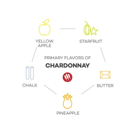 7A-taste-of-chardonnay-by-winefolly-Franklin-Liquors