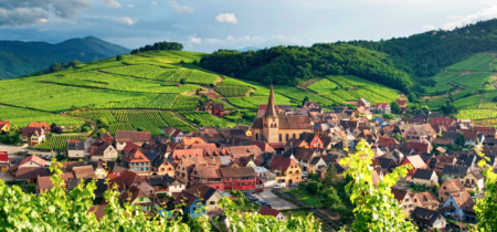 3-Alsace-Franklin-Liquors