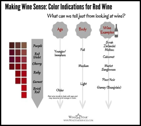 6-Making-Wine-Sense-Red-Wine-Franklin-Liquors