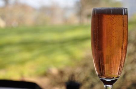 11-sparkling-wine-Franklin-Liquors