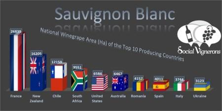 12-Sauvignon-Blanc-Top-10-Franklin-Liquors