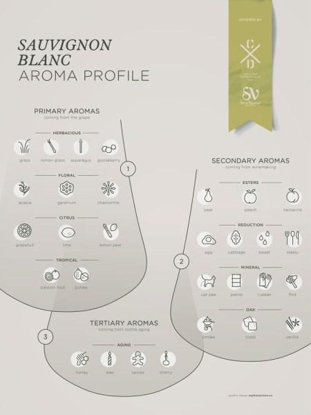 12c-Sauvignon-Blanc-grape-variety-Franklin-Liquors