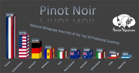 7-Top-10-Countries-Vineyard-franklin-liquors