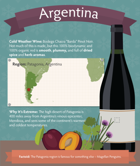 7-chilly-wine-argentina-Franklin-Liquors
