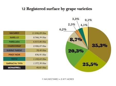 12-cava-grape-varieties-blend-Franklin-Liquors