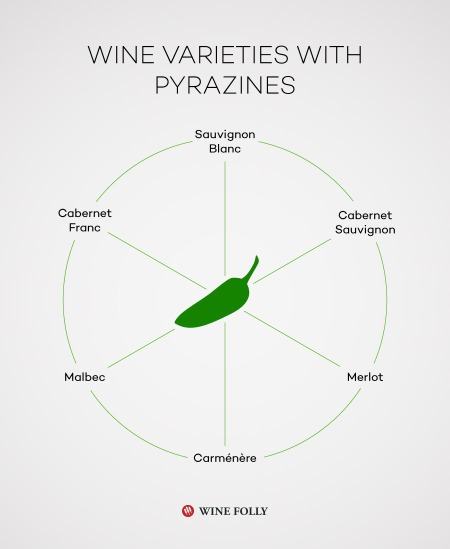 15-Cabernet-Chart-wines-with-pyrazines-Franklin-Liquors