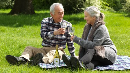 CW0543 Older couple toasting each other