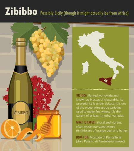 16-zibibbo-Franklin-liquors