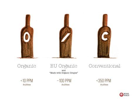 13-organic-wine-vs-conventional-Franklin-Liquors