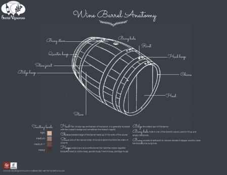 5-Wine-Barrel-Anatomy-Franklin-Liquors