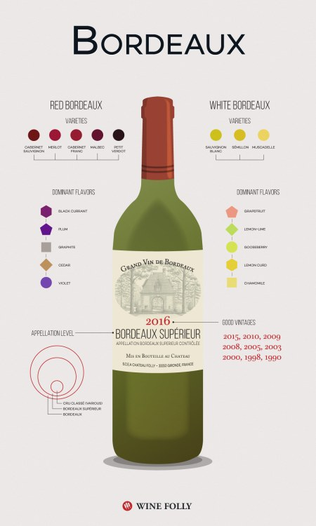 3-Bordeaux-Wine-Infographic-Wine-Folly-Franklin-Liquors