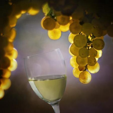 14-white-wine-franklin-liquors