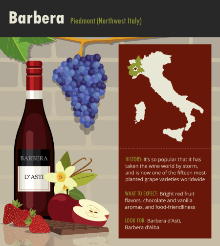 15-barbera-italian-franklin-liquors