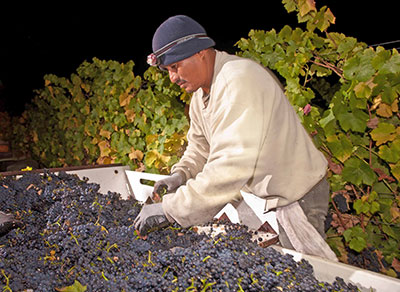 19-harvestworker-franklin-liquors