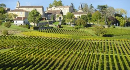 8-vineyard-saint-emilion-franklin-liquors