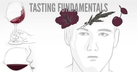 tasting-fundamentals