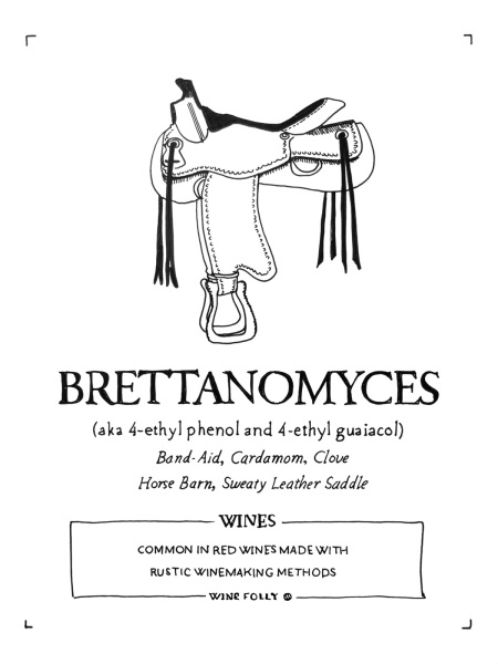 2-brettanomyces-wine-folly-illustration-franklin-liquors