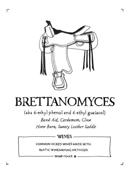 2-brettanomyces-wine-folly-illustration-franklin-liquors