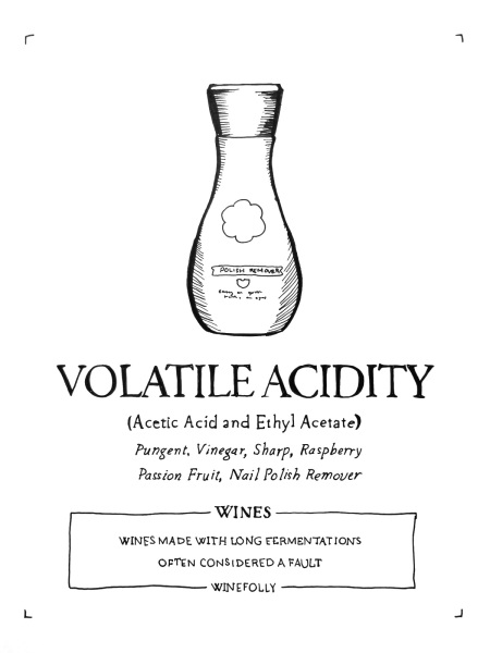 2-volatile-acidity-in-wine-folly-illustration-franklin-liquors